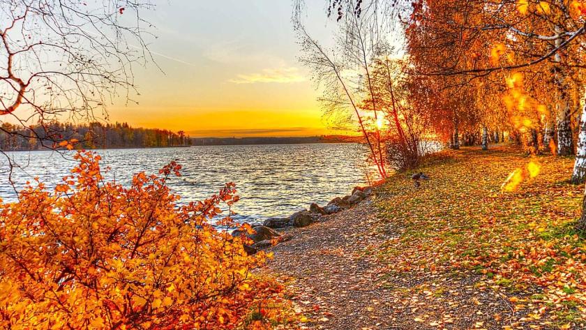 Herbst kostenlos desktop hintergrundbilder Bildschirm Hintergrundbilder