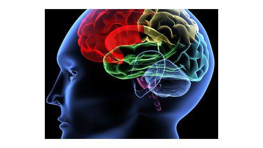 Datenanalyse leistet heute erheblich mehr als das menschliche Gehirn.