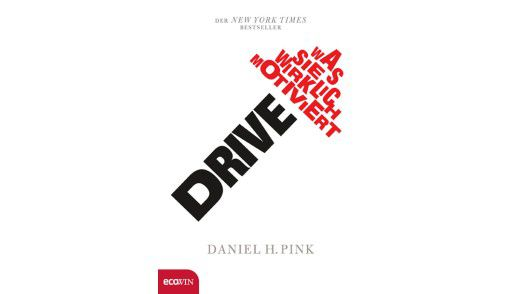 """""""Drive: Was Sie wirklich motiviert"""" ist im Ecowin-Verlag, Salzburg erschienen, Die 240 Seiten gibt es zum Preis von 21,90 Euro."""