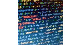 Capgemini-Studie: CIOs beklagen zu viel überflüssige Software - Foto: awesomephant - Fotolia.com