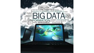 Analyse nach 8 Einsatzbereichen: Big-Data-Anbieter im Vergleich - Foto: T. L. Furrer - Fotolia.com