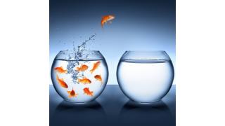 Was Personalexperten raten: Ran an den Job – die besten Karriere-Strategien - Foto: RFsole - Fotolia.com